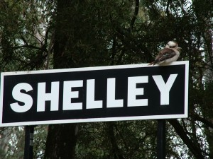 Shelley Station
